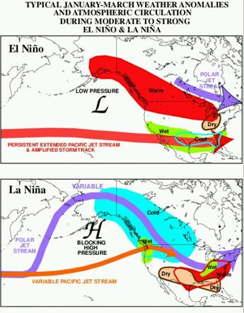 Compare the position of the polar jet stream [purple] in these images of a typical El Niño and a La Niña, with the jet further south for La Niña. : NOAA/Wikimedia