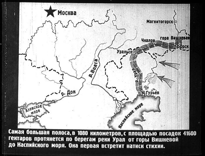 Проект лесополосы по берегам реки Урал
