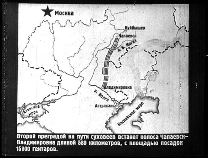 Проект лесополосы на участке Чапаевск — Владимировка